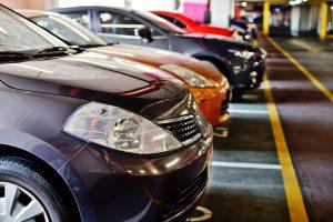 (Elena Stepanova/Shutterstock.com) lustige Autokennzeichen in der Region Beckum